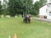fahrturnier_2010-136