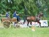 fahrturnier_2010-14