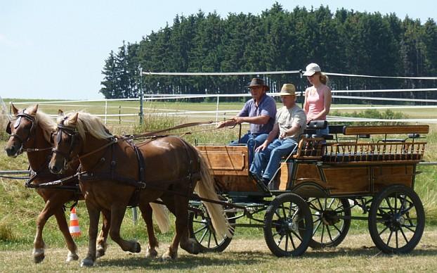 Rudolf Lochstampfer (Heuchlingen ) mit seinem Gespann, dem Trainer und dessen Assistentin Miriam bei der Biegearbeit.